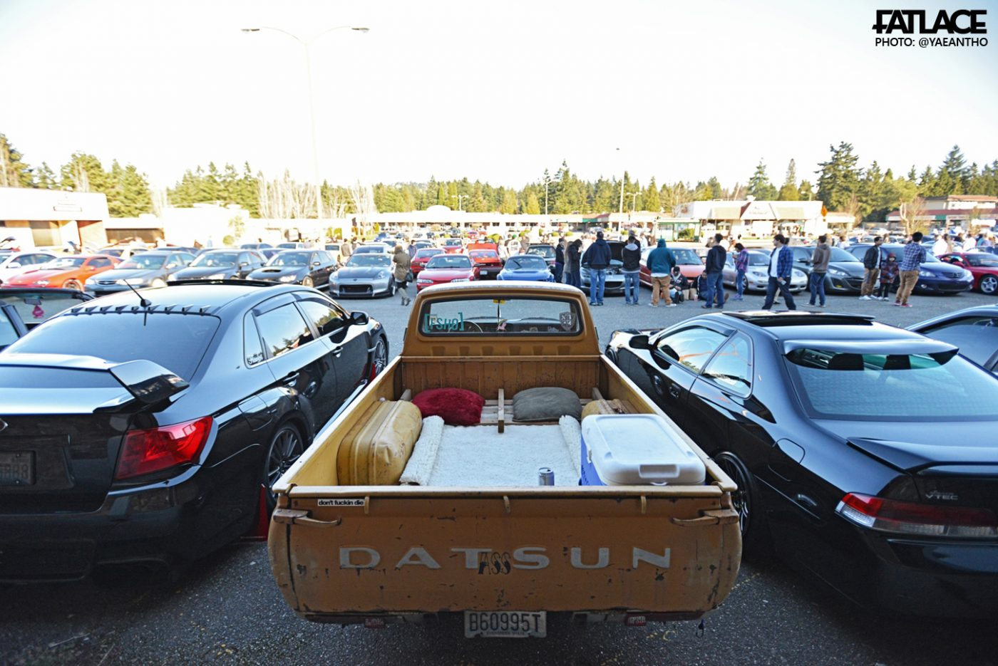 PNW-cars (4)