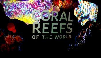 reefs_title